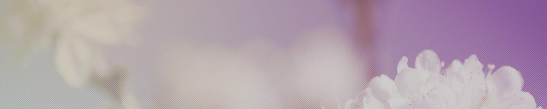 flower background header image